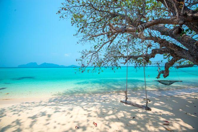 Phuket Real Estate Association Focuses on Developing Phuket